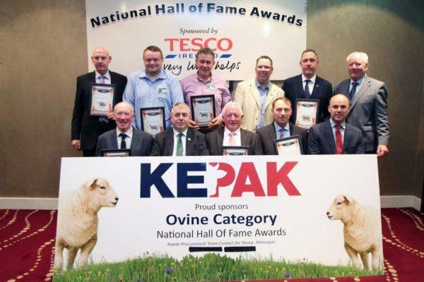 2019 Ovine Winners